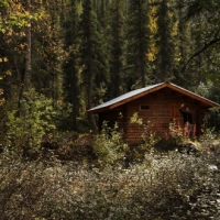 Peavine Cabins